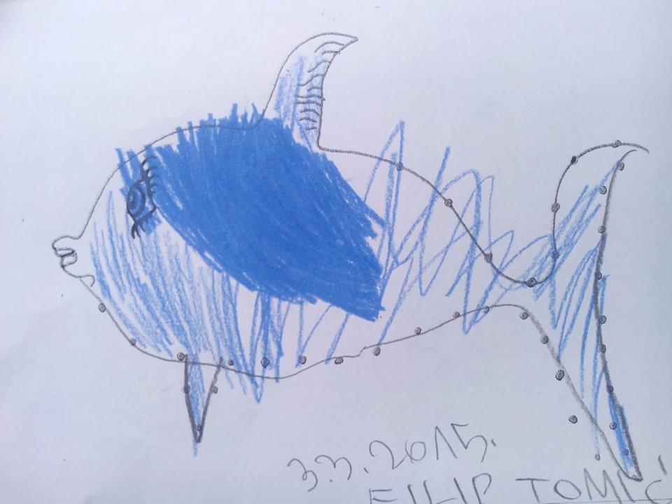 plava riba